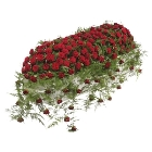 Luxury Red Rose Casket Spray.