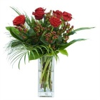 6 Best Red Roses